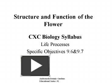 Ppt structure and function of the flower powerpoint presentation ppt structure and function of the flower powerpoint presentation free to view id 1291a zjblm ccuart Choice Image