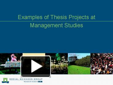 msoe perfusion thesis