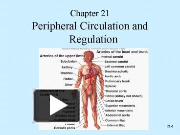 PPT – Peripheral Circulation and Regulation PowerPoint presentation ...