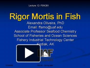 PPT – Rigor Mortis in Fish PowerPoint presentation | free to