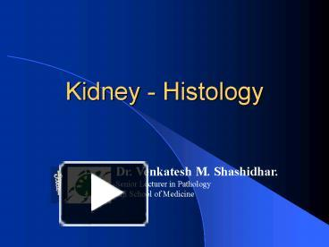 Ppt kidney histology powerpoint presentation free to view id ppt kidney histology powerpoint presentation free to view id 1ca327 zdc1z toneelgroepblik Choice Image