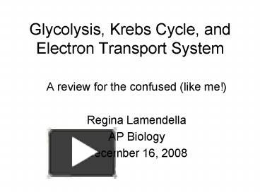 glycolysis to krebs cycle to electron transport chain