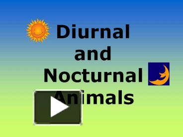 PPT – Diurnal and Nocturnal Animals PowerPoint presentation | free ...