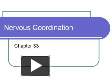 PPT – Nervous Coordination PowerPoint presentation | free to