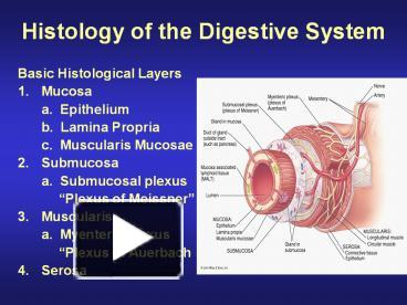 Ppt histology of the digestive system powerpoint presentation ppt histology of the digestive system powerpoint presentation free to download id 3bd917 zmiym toneelgroepblik Images