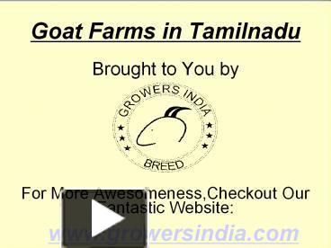 PPT – Goat Farms in Tamilnadu PowerPoint presentation | free