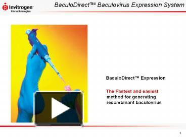 PPT – BaculoDirect™ Baculovirus Expression System PowerPoint