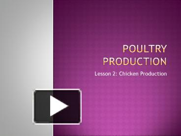 PPT – Poultry Production PowerPoint presentation | free to