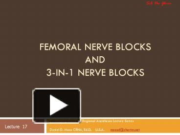 ppt – femoral nerve blocks and 3-in-1 nerve blocks powerpoint, Muscles