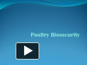 PPT – Poultry Biosecurity PowerPoint presentation | free to