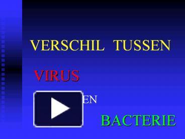 verschil schimmel en bacterie