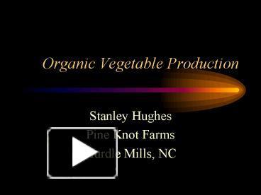 Harvest from organic vegetable garden powerpoint template.