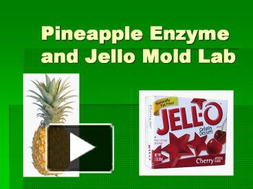 pineapple lab unit 3 6 enzymes