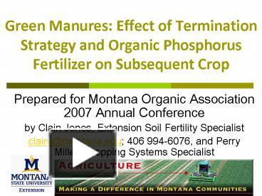 PPT – Green Manures: Effect of Termination Strategy and Organic