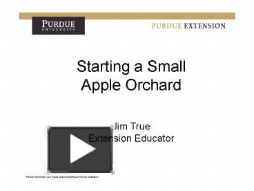 Ppt starting a small apple orchard powerpoint presentation ppt starting a small apple orchard powerpoint presentation free to view id 682bd zdc1z toneelgroepblik Gallery