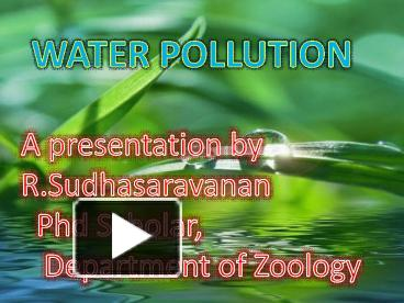 PPT – water pollution ppt PowerPoint presentation | free to download