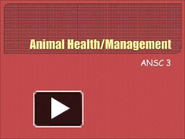 PPT – Animal Health/Management PowerPoint presentation | free to
