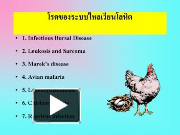 PPT – 1  Infectious Bursal Disease PowerPoint presentation