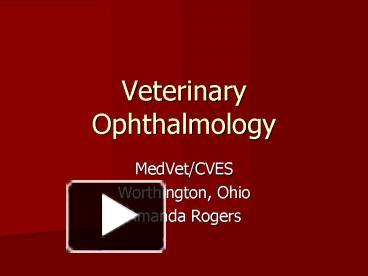Ppt veterinary ophthalmology powerpoint presentation free to ppt veterinary ophthalmology powerpoint presentation free to view id 7e417 zdc1z toneelgroepblik Gallery