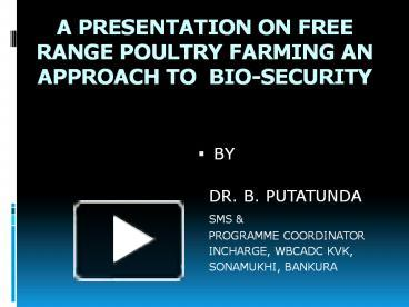PPT – Backyard Poultry PowerPoint presentation   free to