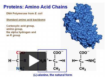 biochem ppt 56
