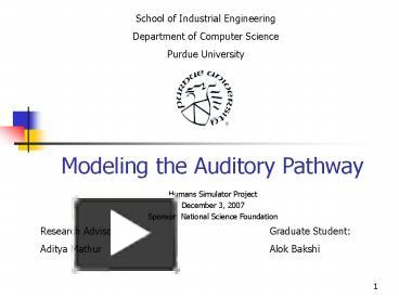 PPT – Modeling the Auditory Pathway PowerPoint presentation | free